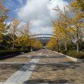 広島広域公園の紅葉がはじまりました♪(2016.11.9)